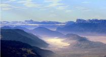 landschap435